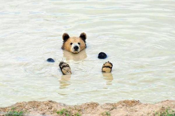 Um, waiter, can I get a Mai Tai over here?